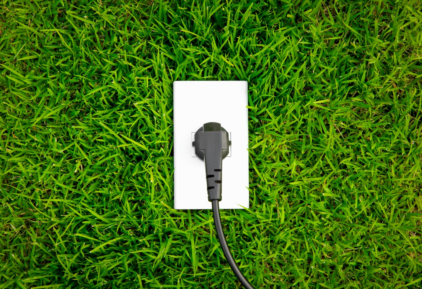 tips for a greener home